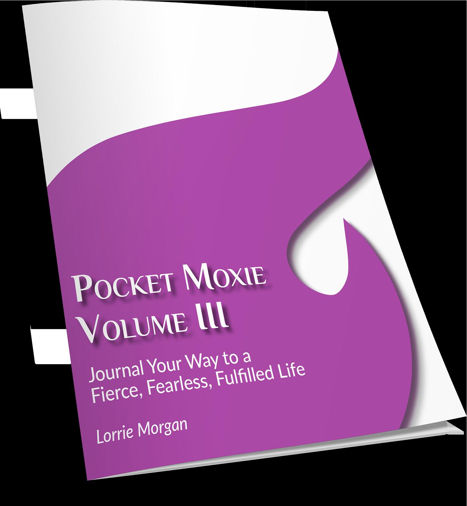 Pocket Moxie V3